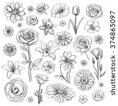collection of hand drawn flowers | Shutterstock .eps vector #374865097