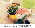People  Gardening  Flower...