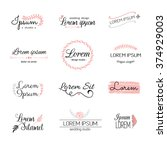 hand drawn logo templates... | Shutterstock .eps vector #374929003