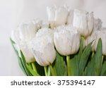 white tulips boquet  soft focus | Shutterstock . vector #375394147
