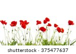 red poppies isolated on white | Shutterstock . vector #375477637