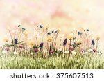 vintage spring meadow with... | Shutterstock . vector #375607513
