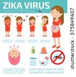 zika virus infographic  and...   Shutterstock .eps vector #375849607