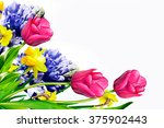 Holiday Card. Spring Flowers...