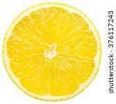 Juicy Yellow Slice Of Lemon ...