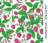 colored raspberries seamless... | Shutterstock . vector #376121947