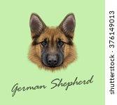 German Shepherd Dog. Vector...