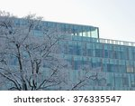 snow covered tree on the... | Shutterstock . vector #376335547
