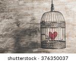 heart inside the bird cage.... | Shutterstock . vector #376350037