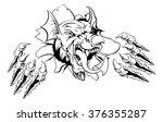 mean welsh red dragon y ddraig...   Shutterstock . vector #376355287