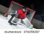 hockey goalie blocking a puck... | Shutterstock . vector #376358287
