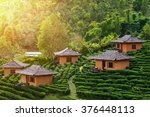tea plantation and hut in ban... | Shutterstock . vector #376448113