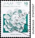 Small photo of DZERZHINSK, RUSSIA - FEBRUARY 04, 2016: A postage stamp of SAHARA shows flower Aeonium arboreum, circa 1992