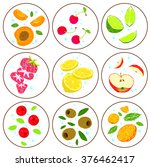 fruit set  apricot  cherry ... | Shutterstock .eps vector #376462417