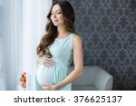home cozy portrait of pregnant... | Shutterstock . vector #376625137