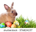easter bunny and easter eggs on ... | Shutterstock . vector #376824157