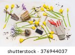 Flat Lay With Spring Flowers ...