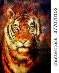 tiger collage on color... | Shutterstock . vector #377070103