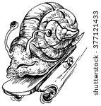 snail on a skateboard   hand... | Shutterstock .eps vector #377121433
