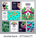 tropical printable set. vector... | Shutterstock .eps vector #377146177