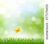 nature background with grass... | Shutterstock . vector #377170453