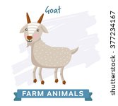 Vector Farm Animal  Goat....