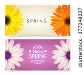 bright spring banners design.... | Shutterstock .eps vector #377248237