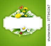 fresh spring background with... | Shutterstock .eps vector #377341267