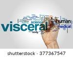 visceral concept word cloud... | Shutterstock . vector #377367547