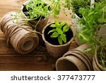 gardening tools  watering can ... | Shutterstock . vector #377473777