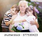 closeup summer portrait of... | Shutterstock . vector #377530423