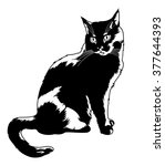 black cat sitting alone.... | Shutterstock .eps vector #377644393