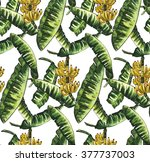 banana leaves with yellow... | Shutterstock . vector #377737003