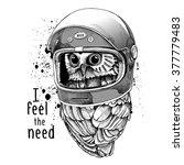 owl in a modern racer helmet.... | Shutterstock .eps vector #377779483
