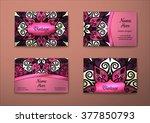 vector vintage visiting card... | Shutterstock .eps vector #377850793