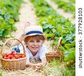 happy funny little kid boy... | Shutterstock . vector #377928103