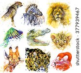 African Animals Set. Watercolo...