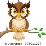 cartoon owl sitting on tree... | Shutterstock .eps vector #378011227