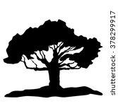 tree   vector tree   tree...   Shutterstock .eps vector #378299917