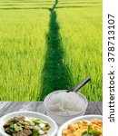 rice and field food background  ... | Shutterstock . vector #378713107