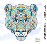 Patterned Head Of The Lioness...