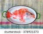 Scorpion Fish  Scorpaenidae ...