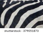 Closeup Of A Zebra Pattern Wit...