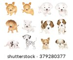 dogs small and big collection... | Shutterstock .eps vector #379280377