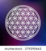 vector flower of life symbol on ...