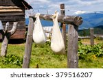 bags of ripening cheese on a... | Shutterstock . vector #379516207