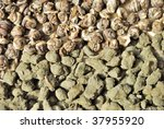 chinese green tea   ulun and... | Shutterstock . vector #37955920