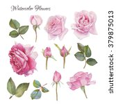 Stock photo flowers set of hand drawn watercolor roses and leaves 379875013