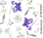 hand drawn garden flowers.... | Shutterstock . vector #379878307