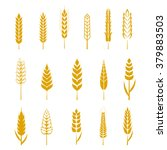 Set Of Simple Wheat Ears Icons...